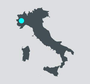 Emarc Group's worldwide network: Headquarter in Vinovo Italy